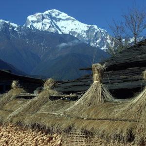 Community House at Raykhor