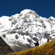Annapurna range at Annapurna basecamp trekking