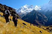 Annapurna downhill at Annapurna basecamp trekking