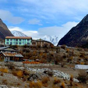 Langtang Valley at Langtang Trekking