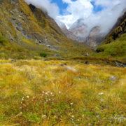 Near Machchhapuchchhre Base camp trekking