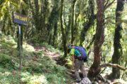 Mardi Himal low camp