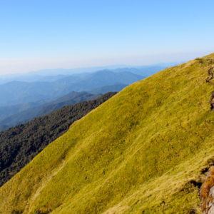Trail on Mardi Himal Trek