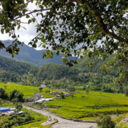 Ruby Valley Trek Lapang Fedi