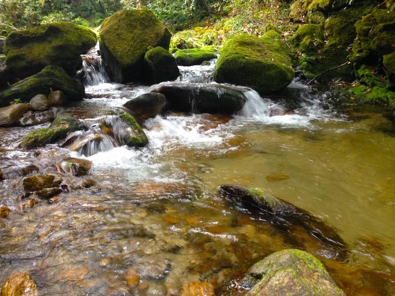Chisapani trekking trail